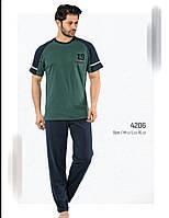 Пижама мужская хлопок  Falkom 4206 летняя бордо-т.синий,серый-т.синий