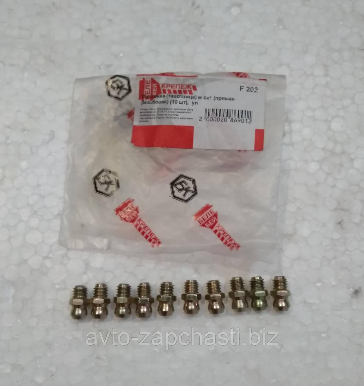 Масленка (тавотница) м 6х1 (прямая резьбовая) (10 шт) (пакет) (F 202)