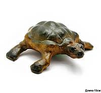 """Черепаха кожа (6"""")"""