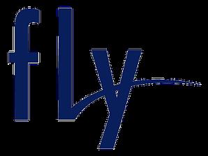 Аккумуляторы для телефонов Fly
