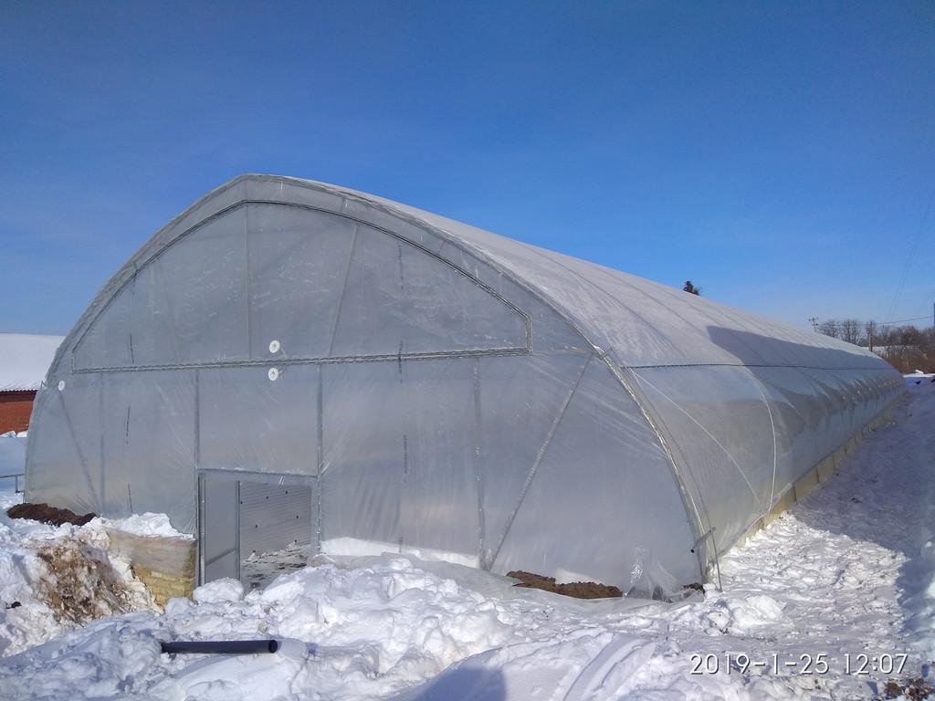 Зимняя теплица для рассады зеленого лука 10х50 метров в Черкасской области