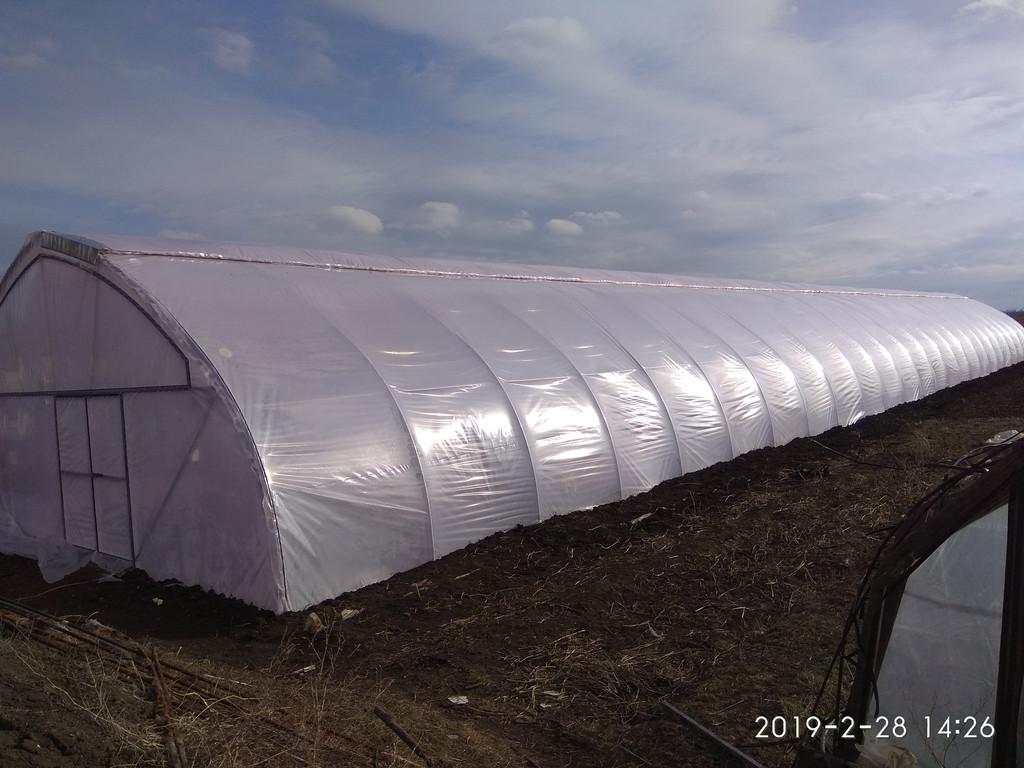 Теплица с верхним и торцевым проветриванием 10х50 метров для зимнего и раннего выращивания огурца