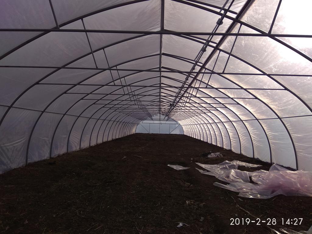 Открытое верхнее проветривание фермерской теплицы изнутри