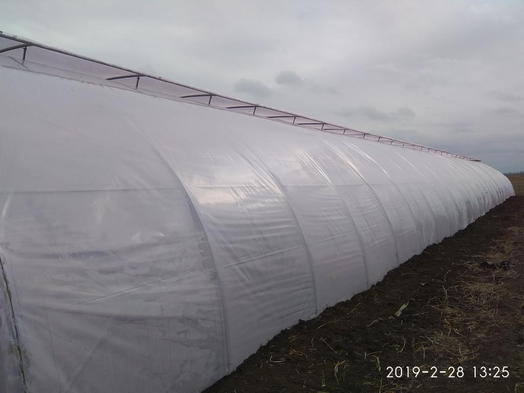 Открытое верхнее проветривание в теплице фермерской с наддувом