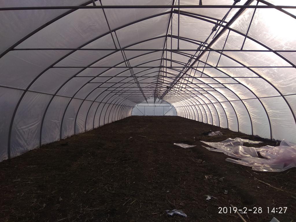 Теплица фермерская с наддувом и верхним проветриванием изнутри