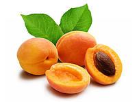 Саженцы абрикоса