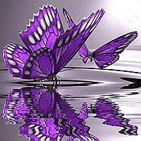 Алмазная вышивка по номерам Бабочки 30*30