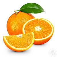 Саженцы апельсина