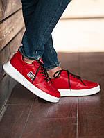 Кроссовки South Freedom red \ Соус Фридом \ Чоловічі кросівки Соус Фрідом