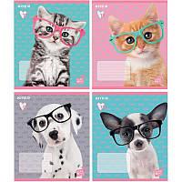 Тетрадь 18 листов линия Kite Studio Pets SP19-237