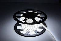 Светодиодная лента 5050-60 220V 14Вт/м IP67 Холодно-белая, фото 1