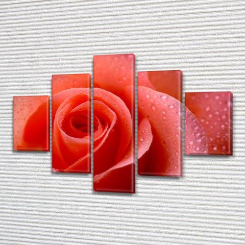 Алая Роза, модульная картина (Цветы), на ПВХ ткани, 65x100 см, (25x18-2/45х18-2/80x18)