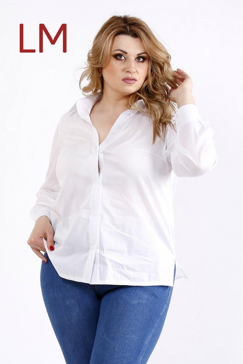 d74234dd0eb От 42 по 74р Женская блузка 7701115 батал большого размера деловая рубашка  поплин белая офисная классическая