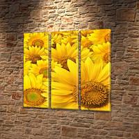 Подсолнухи, модульная картина (Цветы), на ПВХ ткани, 65x65 см, (65x20-3), фото 1