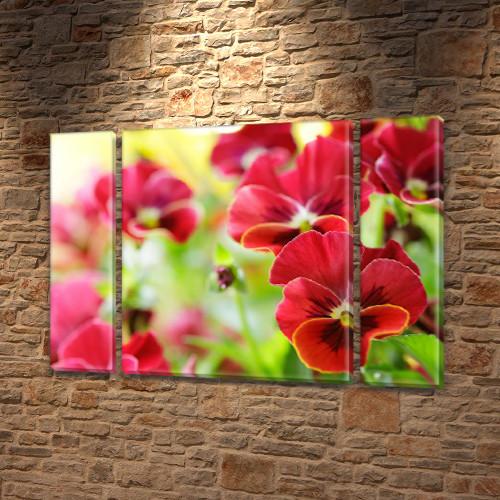 Красные Анютины Глазки, модульная картина (Цветы), на ПВХ ткани, 75x100 см, (75x18-2/75х60)