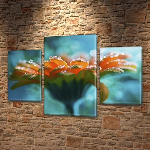 Цветок в каплях росы, модульная картина (Цветы) на Холсте син., 45х70 см, (30x20-2/45x25)