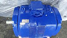 Электродвигатель М280 160/1500, фото 3