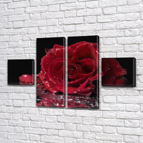 Роза на дожде, модульная картина (Цветы), на Холсте син., 45x80 см, (18x18-2/45х18-2)