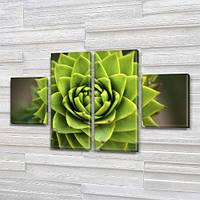 Зеленый Суккулент Кактус, модульная картина (Цветы), на Холсте син., 50x80 см, (25x18-2/50х18-2)