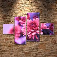 Бордовая Хризантема, модульная картина (Цветы) на Холсте син., 50x80 см, (18x18-2/45х18-2), фото 1