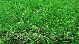 Декоративная искусственная трава AMZ 40мм., фото 3