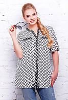 Блуза с планкой черно-белая в клетку АРИЯ, фото 1