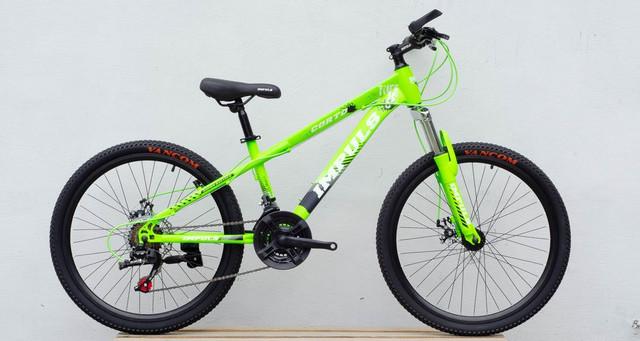 Impuls Corto 24 green купить в Киеве, цена в Украине | alisa-ua