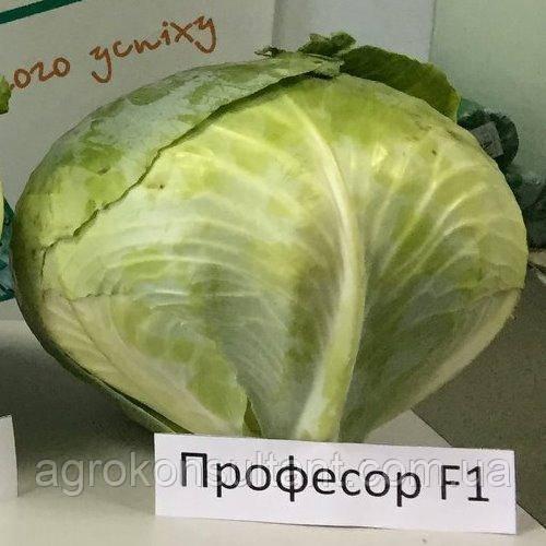 Семена капусты Профессор F1 (Syngenta) 2500 семян ― средне-поздняя (115-120 дней), белокочанная.