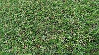 Искусственная трава SPT 25мм.