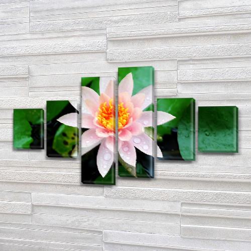 Модульная картина на холсте Нежный Лотос (Цветы), 70x120 см, (25x18-2/35х18-2/65x18-2)