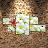Гавайские Цветочки, модульная картина (Цветы), 60x110 см, (18x35-2/18х18-2/60x35), фото 1