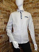 Рубашка на мальчика 6-11 лет белого цвета с окантовкой с длинным рукавом оптом