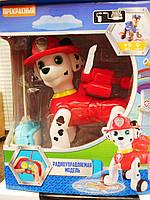 Собачка Щенячий патруль на радиоуправлении G2022
