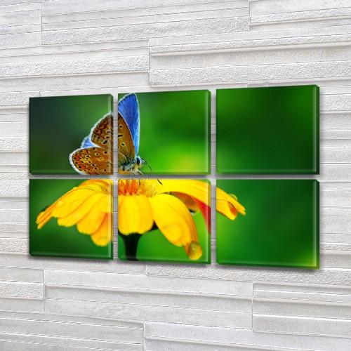 Голубая бабочка на желтом Цветке, модульная картина (Цветы), на Холсте син., 52x80 см, (25x25-6)