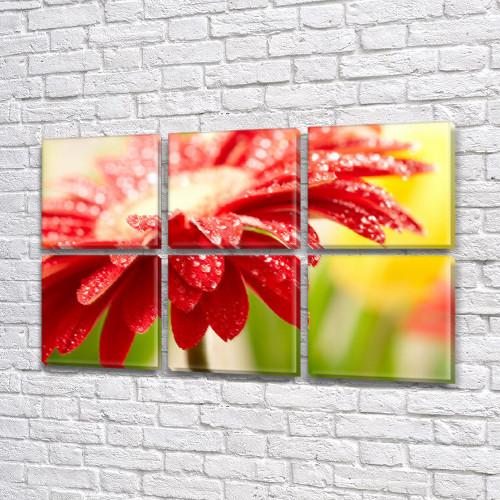 Цветок в росе, модульная картина (Цветы) на Холсте син., 52x80 см, (25x25-6)