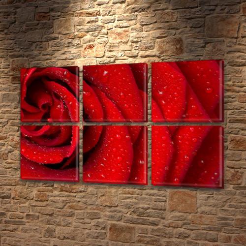 Макро Роза, модульная картина (Цветы), на Холсте син., 52x80 см, (25x25-6)