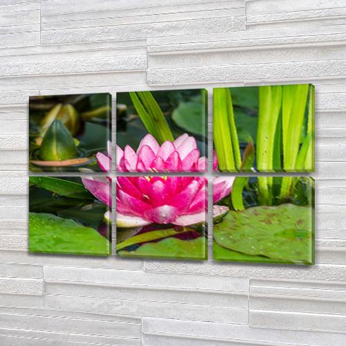 Розовый Лотос, модульная картина (Цветы), на Холсте син., 52x80 см, (25x25-6)