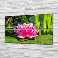 Розовый Лотос, модульная картина (Цветы), на Холсте син., 52x80 см, (25x25-6), фото 1