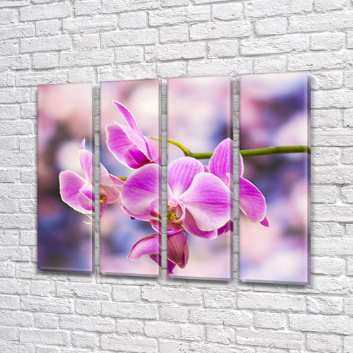 Ветка Орхидеи, модульная картина (Цветы), на Холсте син., 65x80 см, (65x18-4)