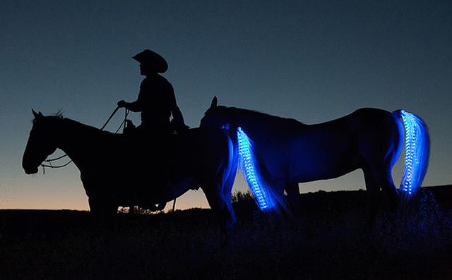 Светодиодные ленты в хвостах лошадей