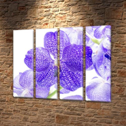 Фиолетовая Орхидея, модульная картина (цветы), на Холсте син., 65x80 см, (65x18-4)
