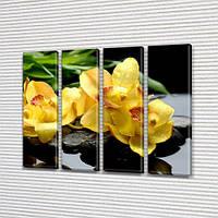 Желтые Орхидеи, модульная картина (Цветы) на Холсте син., 65x80 см, (65x18-4), фото 1