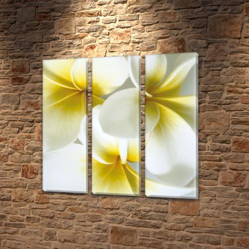 Белые цветы, модульная картина на Холсте син., 65x65 см, (65x20-3)