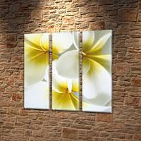 Белые цветы, модульная картина на Холсте син., 65x65 см, (65x20-3), фото 1