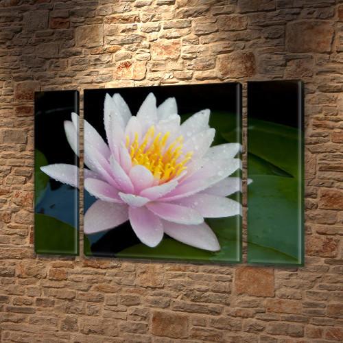 Цветок Лотоса, модульная картина (Цветы) на Холсте син., 75x100 см, (75x18-2/75х60)