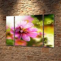 Рассвет в Лесу, модульная картина (Цветы), на Холсте син., 75x100 см, (75x18-2/75х60), фото 1