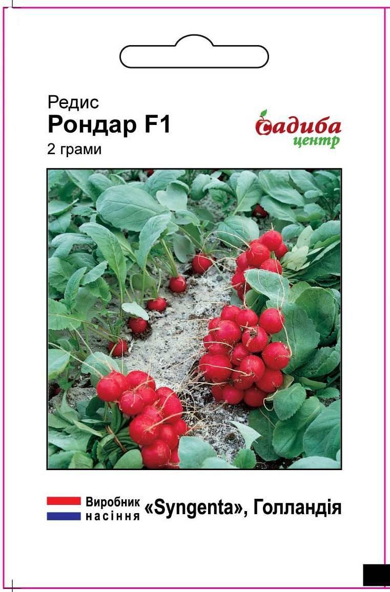 Ранний редис для закрытых теплиц, холодностойкий гибрид Рондар F1, 2 г, Syngenta (Садыба Центр) Семена почтой