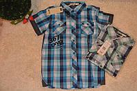 Рубашка для мальчиков оптом Glo Story 134-164  см