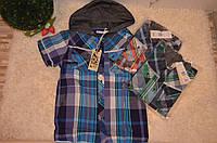 Рубашка с капюшоном  для мальчиков  оптом Glo Story 134-164  см