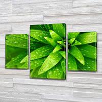 Зеленые лепестки, модульная картина (Цветы) на Холсте, 80х120 см, (55x35-2/80x45), фото 1